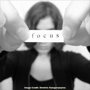 Focus by Dimitris Kalogeropoylos
